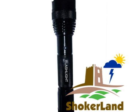 Электрошокер Flashlight C — Купить в  Москве. Отзывы.