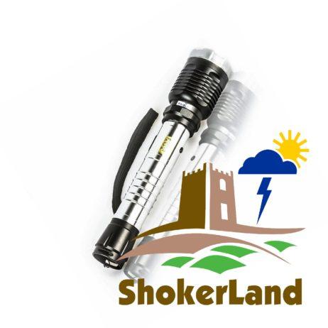 elektroshoker-armata-platinum-l-116